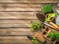 家庭菜園 園芸用品